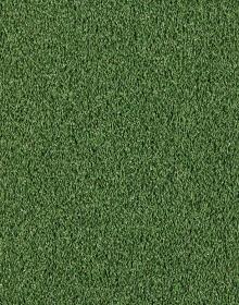 Um.tráva EASY LAWN VERDINO-2m